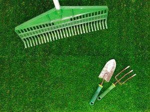 lawn concept